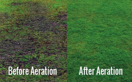 See beautiful results with lawn aeration