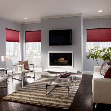 Lutron Motorized Honeycomb Shades Dealer