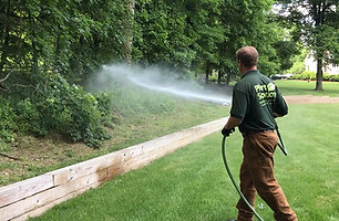 New Jersey Tree Spraying