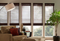 Lutron Roman Shades Dealer NJ.jpg