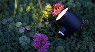 Outdoor Spotlight sales, service and installation in Austin Texas