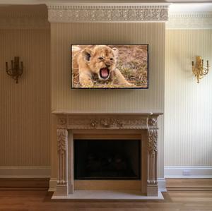 Mantel TV Mount Company Long Island.jpg