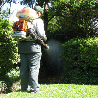 Mosquito-Backpack-Sprayer-Control-NJ.jpg
