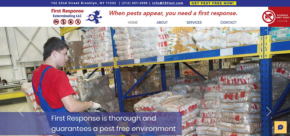 Commercial Pest Control NYC