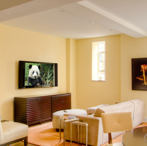 TV Mounting Service New Jersey Mountain
