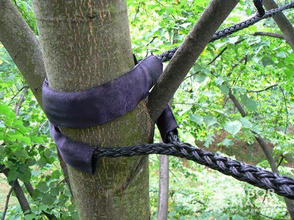 New-Jersey-Tree-Cabling-and-Bracing.jpg
