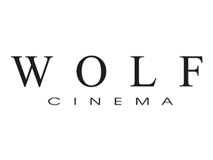 Wolf Cinema Manufacturers Rep New York Home Theater Projector