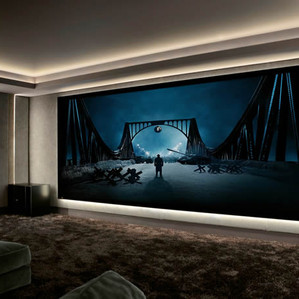 Home Theater Projection Screen  Long Isl