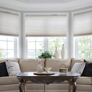 Lutron Automated Smart Honeycomb Shades Dealer And Installation NJ