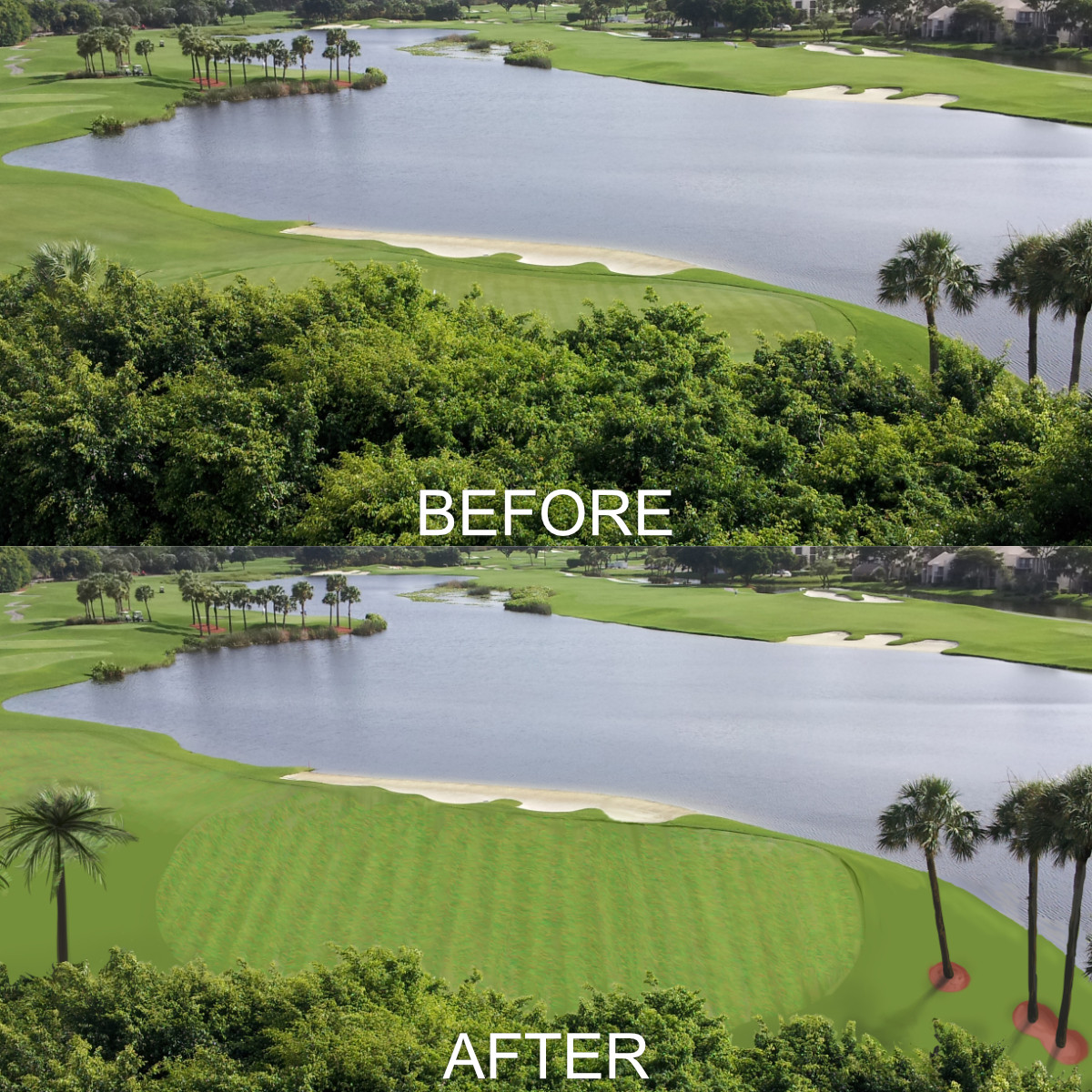 Putting Green Reveal