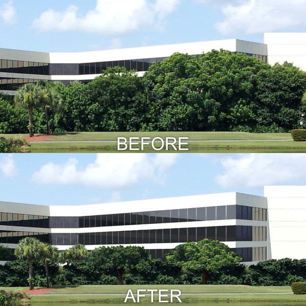 Corporate Center Reveal