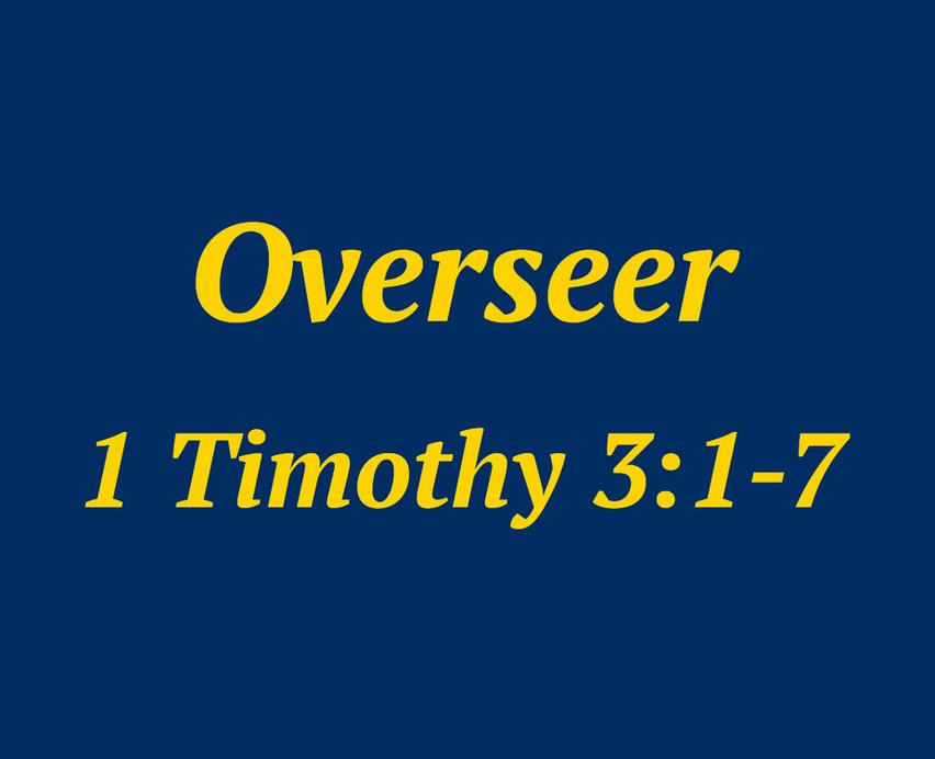 """""""Overseer"""""""