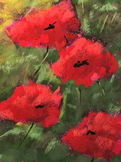 Poppies, Pastel
