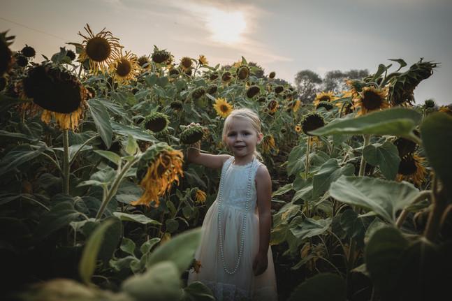 Millie-Sunflower-Essex-13.jpg