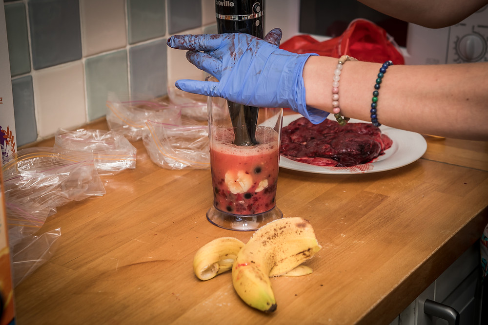 Preparation of a placenta smoothie.