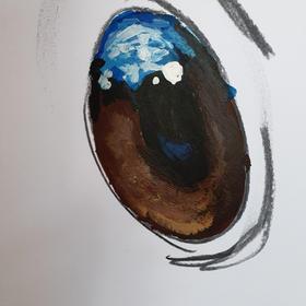 Fiona Groom's Eye Painting