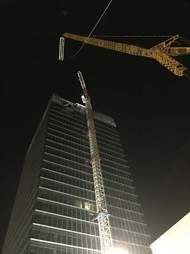 night_cranes.jpg