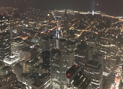 Crane City Lights