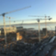 multiple_cranes.jpg
