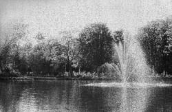 """""""Amsterdam's garden"""""""