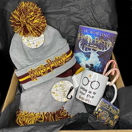Winter Harry Potter Book Box
