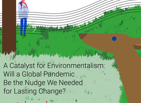 A Catalyst for Environmentalism:  Will a Global Pandemic Be the Nudge We Needed for Lasting Change?