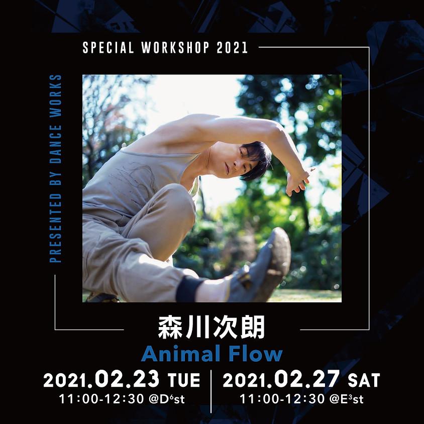 【2021.2.23(火),27(土)】森川次朗 / Animal Flow