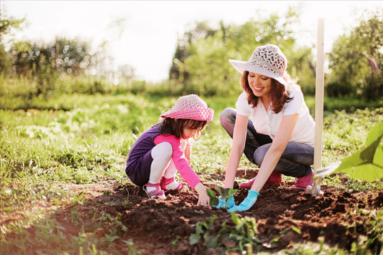 Sustainability as the norm in early childhood settings