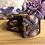 Thumbnail: Guylian shell brownie