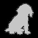ALPHA____1.png