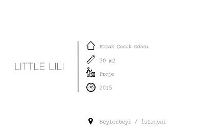 LITTLE_LILI--.png