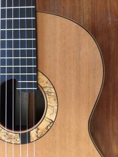 Guitarra para Hugo Dellamea
