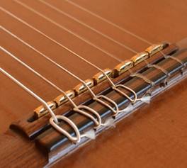Camarada 7 cuerdas