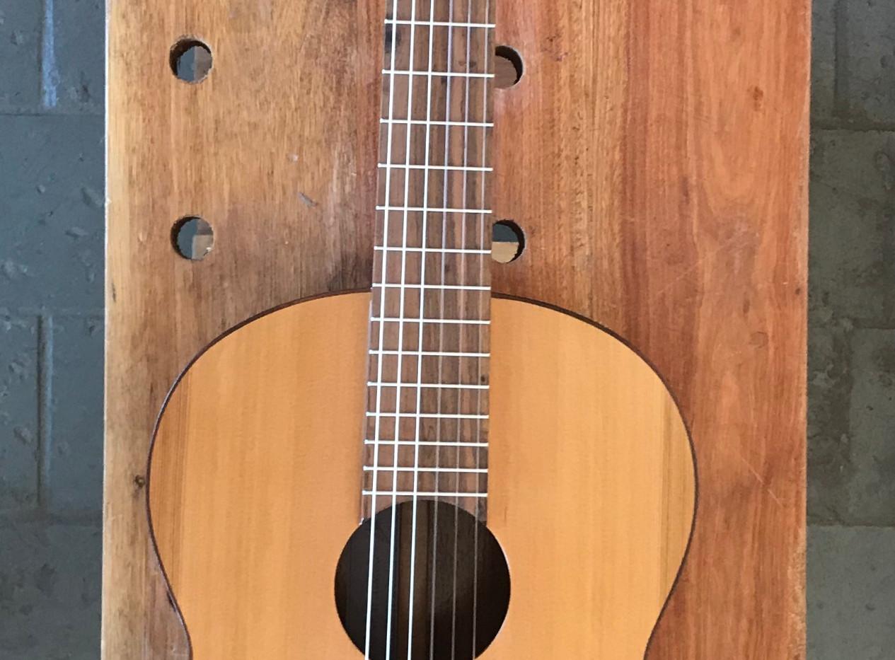Guitarra Argentina