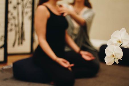Yoga Therapy Promo.jpeg