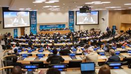 UN Human Rights Summit.jpg