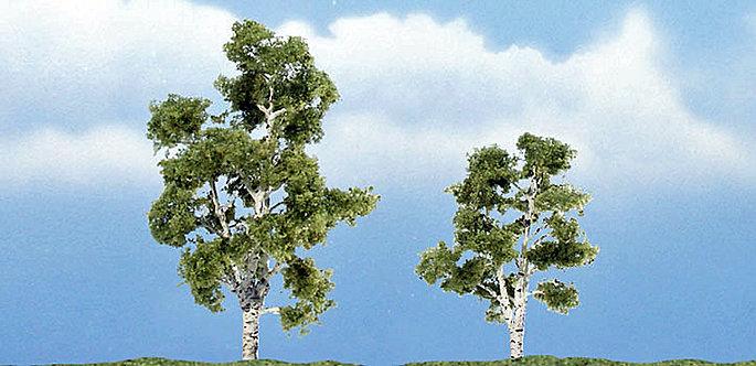Sycamore Premium Trees 2/Pk