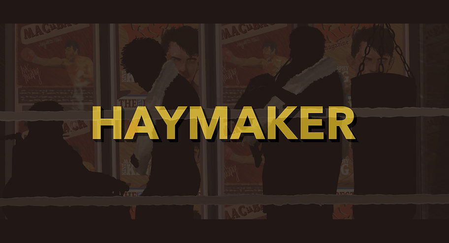 Haymaker Cover4(Version2).jpg