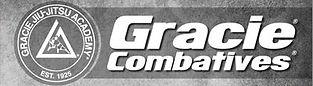 Gracie Jiu-Jitsu Combatives  - Richmond VA