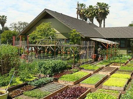 Construcción de viviendas y Granjas ecológicas autosostenibles