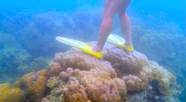 Man damaging coral reef