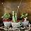 Thumbnail: Vintage Tea Cup Christmas Planter