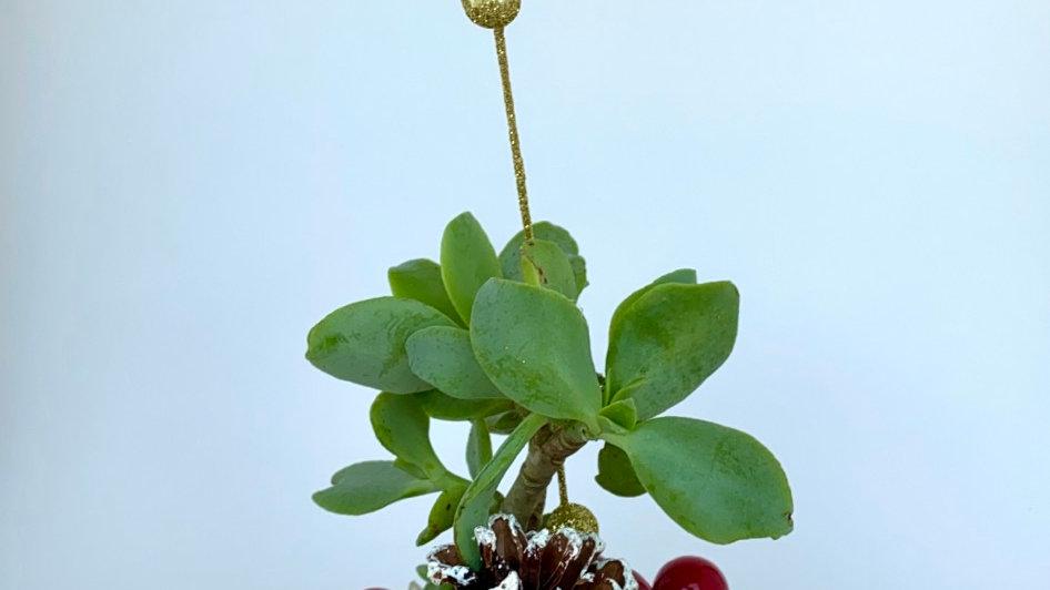Vintage Tea Cup Christmas Planter
