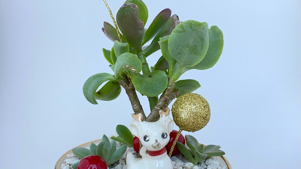Vintage Tea Cup Christmas Planter