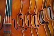 Lyrical Orchestra - Makeda For Event