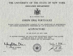 NYS Acupuncture License.JPG