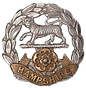 Hampshire Cap Badge.png