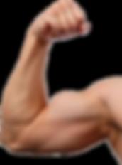Muscle-Arm-PNG-Image-Transparent-Backgro