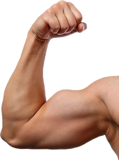Muscle-Arm-PNG-Image-Transparent-Backgro