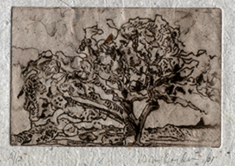 Early Winter, 2001, Monoprint on Handmade Paper, 14x14
